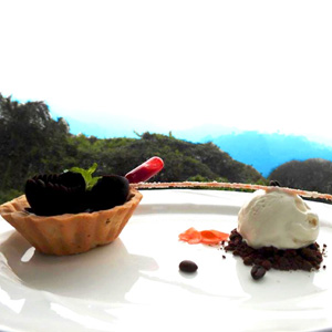 Coffee Degustation in Coorg at Fern Tree
