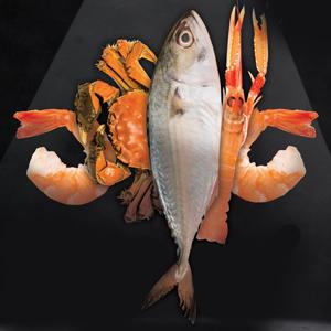 Morisco Seafood Studio at Morisco