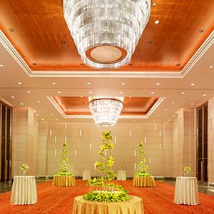 Ballroom,Taj City Centre, Gurugram