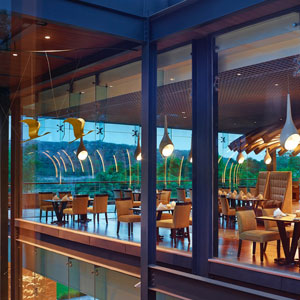 BUZZ,The Gateway Resort Damdama Lake, Gurugram