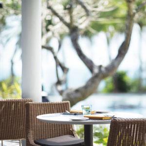 The Palms,Taj Bentota Resort & Spa